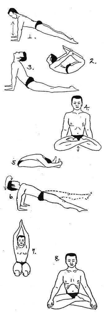 graine_de_prana_yoga